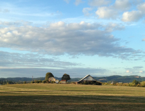 Willamette Valley Winery Visits, Pt2